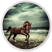 Brown Horse Galloping On The Coastline Round Beach Towel