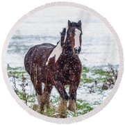 Round Beach Towel featuring the photograph Brown Horse Galloping Through The Snow by Scott Lyons