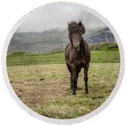 Round Beach Towel featuring the photograph Brown Icelandic Horse by Edward Fielding