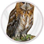 Brown Owl Or Eurasian Tawny Owl  Strix Aluco - Chouette Hulotte - Carabo Comun -  Nationalpark Eifel Round Beach Towel