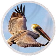 Brown Pelican In Flight - Two Round Beach Towel