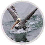 Brown Pelican Landing On Water . 7d8372 Round Beach Towel