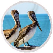 Brown Pelican Pair Round Beach Towel