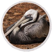 Brown Pelican Relaxing Round Beach Towel