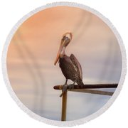 Round Beach Towel featuring the photograph Brown Pelican Sunset by Robert Frederick