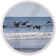 Brown Pelicans In Flight Round Beach Towel