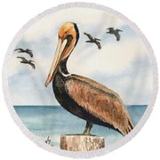 Brown Pelicans Round Beach Towel