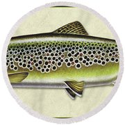 Brown Trout Id Round Beach Towel