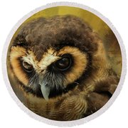 Brown Wood Owl Round Beach Towel