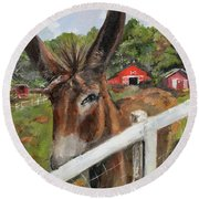 Round Beach Towel featuring the painting Bubba - Steals The Show -donkey by Jan Dappen