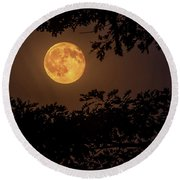 Round Beach Towel featuring the photograph Buck Moon 2016 by Everet Regal