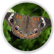 Buckeye Butterfly Round Beach Towel