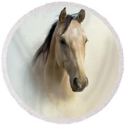 Buckskin Beauty Round Beach Towel by Betty LaRue