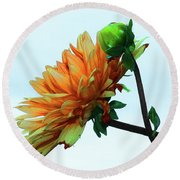 Bud And Blossom Round Beach Towel