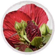 Budding Beauty Round Beach Towel