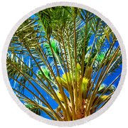 Budding Medjool Date Tree Round Beach Towel