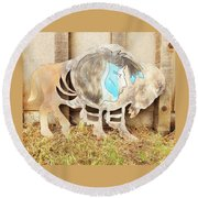 Round Beach Towel featuring the photograph Buffalo Dreams by Larry Campbell
