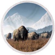 Buffalo Grazing Round Beach Towel by Daniel Eskridge