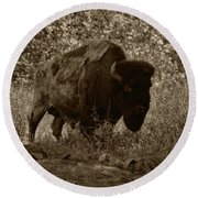 Buffalo Junction Round Beach Towel by B Wayne Mullins