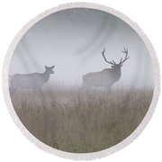 Bull And Cow Elk In Fog - September 30 2016 Round Beach Towel