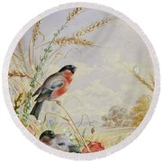 Bullfinches In A Harvest Field Round Beach Towel