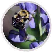 Bumble Bee, Blue Indigo Round Beach Towel