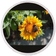 Bumble Bee Collecting Pollen On Sunflower Round Beach Towel