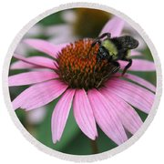 Bumble Bee On Pink Coneflower Round Beach Towel