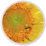 Bumble Bee With Pollen Sacs Round Beach Towel