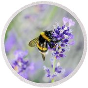Round Beach Towel featuring the photograph Bumblebee by Bee-Bee Deigner