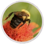 Round Beach Towel featuring the photograph Bumblebee by Chris Berry