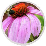 Round Beach Towel featuring the photograph Bumblebee On Coneflower by Randy Rosenberger