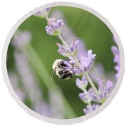 Round Beach Towel featuring the photograph Bumblebee On The Lavender Field 2 by Andrea Anderegg