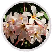 Bunch Of Plumeria Round Beach Towel