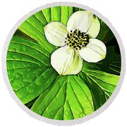 Bunchberry Blossom Round Beach Towel