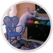 Bunny In Small Room Round Beach Towel by Garry Gay