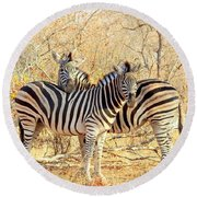 Burchells Zebras Round Beach Towel