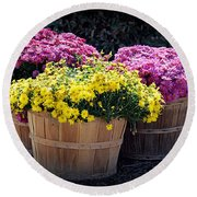 Round Beach Towel featuring the photograph Bushels Of Fall Flowers by AJ Schibig