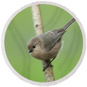 Round Beach Towel featuring the photograph Bushtit by Doug Herr