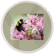 Round Beach Towel featuring the photograph Busy As A Bumblebee by Ricky L Jones