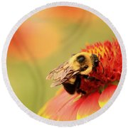 Round Beach Towel featuring the photograph Busy Bumblebee by Chris Berry