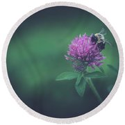 Round Beach Towel featuring the photograph Busy by Shane Holsclaw
