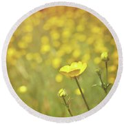 Buttercups Round Beach Towel by Lyn Randle