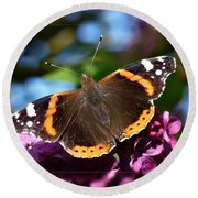 Butterfly 12 Round Beach Towel