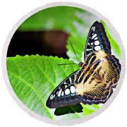 Butterfly 13a Round Beach Towel