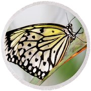 Butterfly #1945 Round Beach Towel