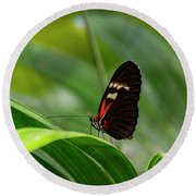 Butterfly #1946 Round Beach Towel