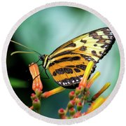 Butterfly #1957 Round Beach Towel