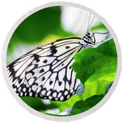 Butterfly #2025 Round Beach Towel