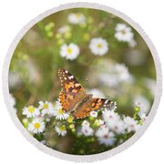 Butterfly #8 Round Beach Towel